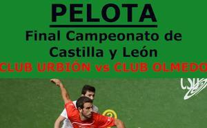 Aldeatejada acoge las finales del Campeonato de Castilla y León de clubes de pelota a mano