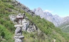 La provincia de la biosfera: Picos de Europa