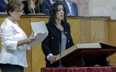Un lustro en política de una amante del flamenco