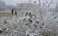Puerto el Pico, -6,9º; Cuéllar, -6,4º; Aranda de Duero, -5,9º... Castilla y León recibe el año helada
