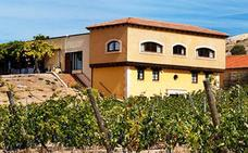 La familia Ferrer comprará seis bodegas al grupo Freixenet, entre ellas Valdubón, de Ribera de Duero