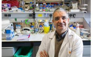Un experto del CIC presidirá la Asociación Española de Investigación del Cáncer