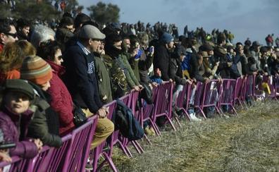 Más de 25.000 personas abarrotan a media mañana el Nacional de Galgos en Nava del Rey
