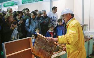 Aldeatejada apuesta por el sector agrícola y la apicultura con dos ferias