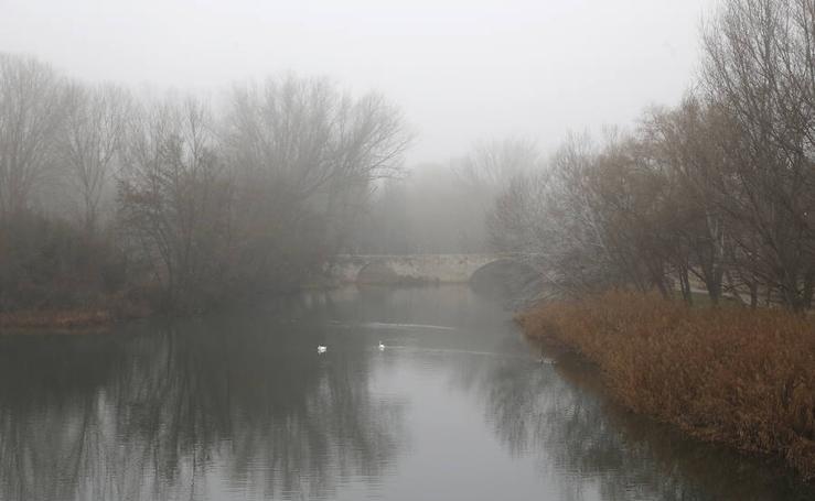 Niebla y frío en la capital Palentina