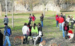 El Ayuntamiento regulará la tenencia de animales potencialmente peligrosos