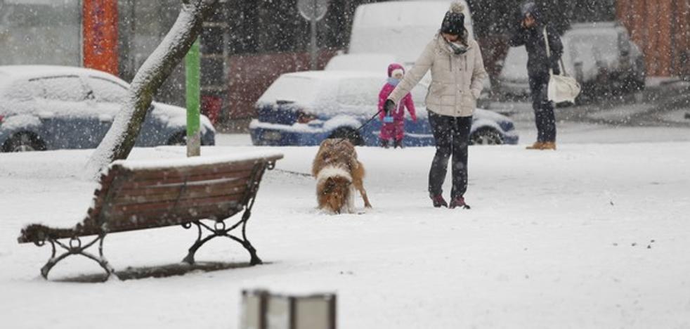 Activada la fase de alerta por nevadas en las zonas de la Cordillera Cantábrica y de la Meseta de la provincia de León