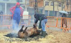 Fiesta de la matanza en Dueñas