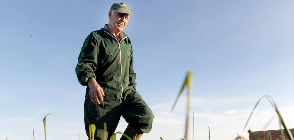 Castilla y León exigirá empezar a definir «de una vez» quién cobrará la PAC