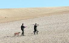 Palencia pierde en diez años la mitad de sus licencias de caza