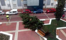 Fin de semana de frío, viento y con posibilidad nieve en Valladolid