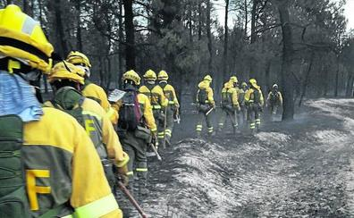 La Junta destina 400.000 euros para restaurar el pinar destruido en Navalilla
