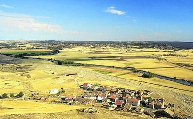 Cinco rutas por la Ribera Soriana