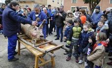 Palazuelo recuerda su tradición marranera en la fiesta de la matanza