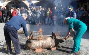 Vuelven las matanzas tradicionales a la Sierra de Francia