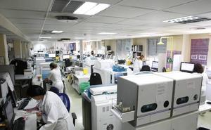 Salamanca registra uno de los dos únicos casos de fiebre recurrente por garrapatas