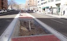 Un centenar de árboles adornarán tres calles sin sombra del barrio vallisoletano de Parquesol