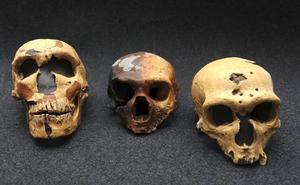 Encuentran en Gibraltar la segunda huella en el mundo de un neandertal