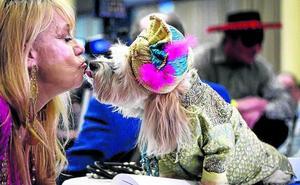 Carnaval canino en Nueva York