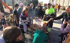 Robladillo celebra su tradicional matanza