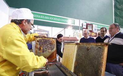 La Feria Apícola de Aldeatejada arranca con ponencias técnicas, talleres infantiles y degustaciones
