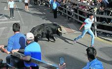 Medina del Campo reagrupa las ferias en cinco eventos