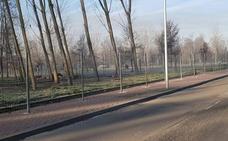 El paseo de la Alameda de Ciudad Rodrigo ganará 22 aparcamientos tras la obra