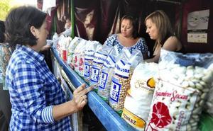 La superficie de cultivo de legumbres de calidad en Castilla y León crece el 63% en cinco años
