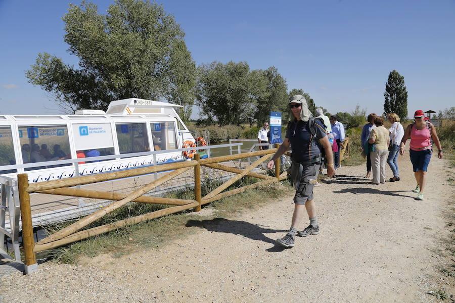Un encuentro del Camino de Santiago en Palencia da voz a los peregrinos extranjeros