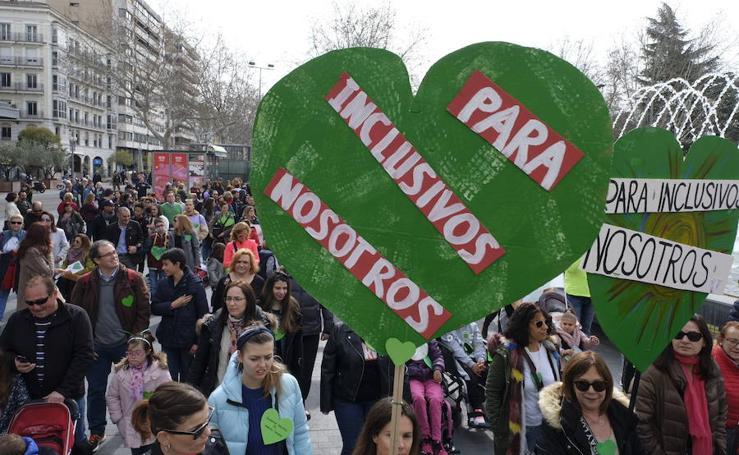 Más de 5.000 personas se movilizan en Valladolid en defensa de los centros especiales