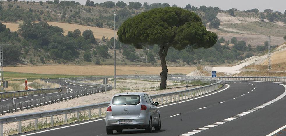 Un movimiento ciudadano salvó de la tala al pino solitario de la autovía que une Valladolid y Segovia