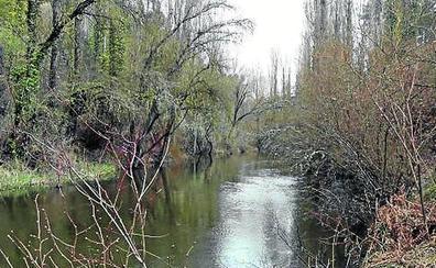 El Espadañal teme por el futuro del río Cega