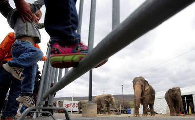 Movilización contra un circo con animales en La Lastrilla