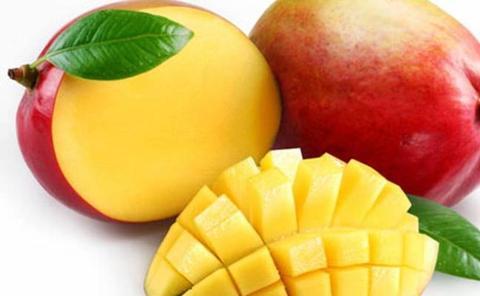 Mango, el sabor dulce de los trópicos