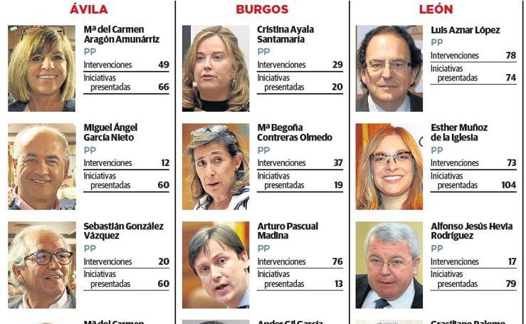 Actividad parlamentaria de los senadores de Castilla y León 1