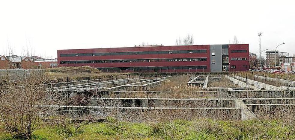 El barrio del Campo de la Juventud de Palencia reclama el control de las palomas