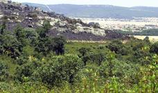 La Reserva de Caza de la Sierra de la Culebra pospone la subasta que iba a celebrarse el sábado