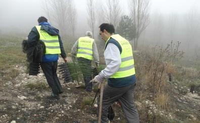 El pueblo que más árboles planta de España está en Valladolid
