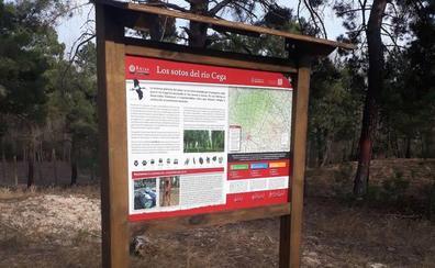 Tres rutas de senderismo muestran el patrimonio natural de Aguilafuente