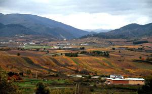 Las rutas del vino de Castilla y León entrarán en el sistema de señalización turística del Gobierno