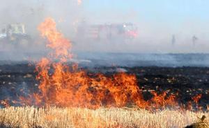 La Junta suspende la quema de restos vegetales en Ávila por riesgo elevado de incendios
