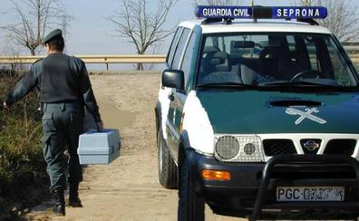 La Guardia Civil investiga a un vecino de San Leonardo de Yagüe por capturar un zorro con un «lazo»