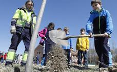 Palencia conmemora el Día Nacional Forestal