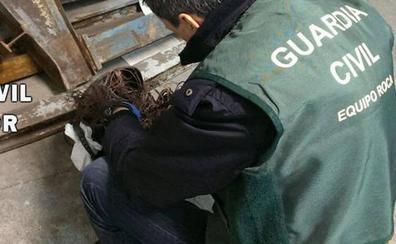 Detenido por robar pienso y herramientas en una explotación de Villabáñez