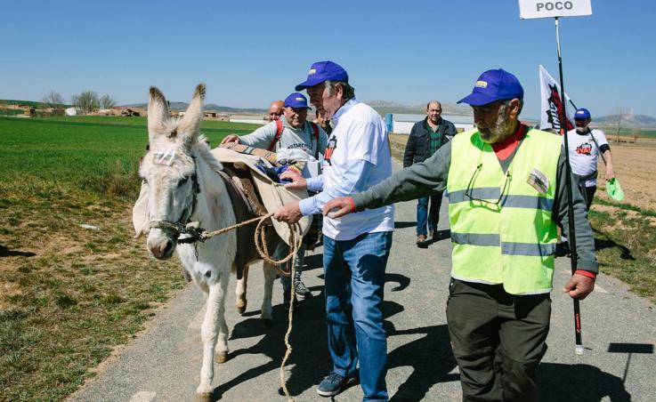 El alcalde de Torrubia (Soria) viaja a Calatayud con una burra para asistir a la Revuelta de la España Vaciada