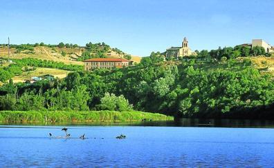 Riberas de Castronuño, Mil aves para un paraíso