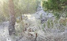 Denuncian la colocación de trampas en rutas ciclistas del municipio vallisoletano de Íscar