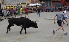 Villalón celebra este sábado la primera suelta de vacas El Tortillero