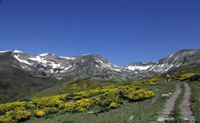 Una novedosa aplicación acerca la Montaña Palentina al visitante