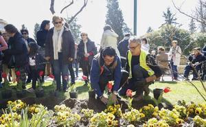 La plantación de tulipanes hace visible la solidaridad con los enfermos de parkinson